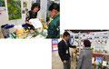 日本チョウ類保全協会/キープ協会