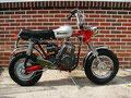 Rupp Roadster 1970