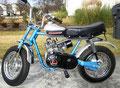 Rupp Roadster 1972