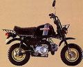 Honda Gorilla Z50J 1981