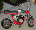 Fox Spoke Minibike