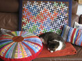 Flic-Flac mit Katze [85 cm x 70 cm]