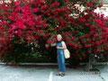 А такого огромного, почти дико растущего куста роз, я никогда прежде не видела