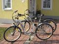 Unsere E-Bikes