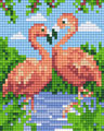 Couple flamants roses
