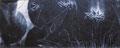 「池Ⅱ」1994年/25号大 510×1270/アクリル 麻キャンバス