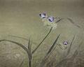 「紫つゆ草」1989年/50号/アクリル 麻キャンバス