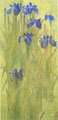 「アイリスⅡ」1994年/1220×590/アクリル 麻キャンバス
