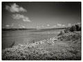Ol' Man River, Mississippi