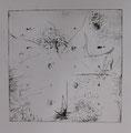 "Zero / drypoint on paper / image size : 30 x 30cm(aprx.12""x 12"")"