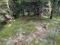 Unzählige steile Serpentinen brachten uns Meter für Meter dem Gipfel des Stein am Mandl näher.