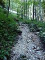 Der Steig steilte noch einmal an. Er war an dieser Stelle sehr steinig.