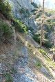 Fast schnurgerade führte uns das noch immer sehr nett angelegte Wandersteiglein hinab.
