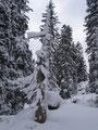 Geniale Winterimpressionen!