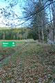 Gleich nach dem besagten Holzlager drehte der Wegverlauf Richtung rechts, dem Weidezaun entlang zum Waldesrand empor.
