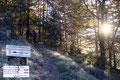 Nach den ersten Metern auf einer Forststraße (Weg Nr. 409) entlang kamen wir zu einer Abzweigung und wechselten dort sogleich auf den markierten Wandersteig mit der Nummer 460 der uns fortan in Serpentinen nach oben brachte.