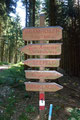 Urplötzlich stand man mitten im Wald, am höchsten Punkt des Bramhosen - auf 960m, welcher nur mit Holztaferln gekennzeichnet war.