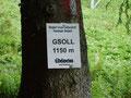 ... bis wir auf ca. 1150 HM das sogenannte Gsoll erreicht hatten.
