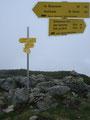 Jetzt aber kam die große Enttäuschung!! Obwohl in der Karte ein Gipfelkreuz eingezeichnet war, war hier oben an Ort und Stelle keines zum Ausfinden. Nur dieser Wegweiser zierte den höchsten Punkt des Seegupf.