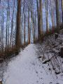 ... um wiederum in unzähligen Serpentinen den Berghang empor zu steigen.