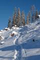 … welcher sich nun von der winterlichen Forststraße abwandte und  über einen breiten Schlag der Westflanke des Berges ansteilte.
