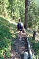 Nach dem Passieren der Weggabelung ging es zügig, dem bereits im Aufstieg absolvierten Steig in Serpentinen bergab zur Hütte.