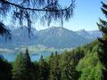 … vorbei an vom Wald freigegebenen wunderschönen Ausblicken auf die gegenüberliegenden Bleckwand, …