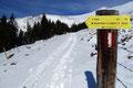 """Trotz allem reichten diese paar Zentimeter aus, um unsere """"Schneeteller"""", anstatt am Rücken zu schleppen, anzuschnallen. Somit wurde auch die geplante Schneeschuhtour auf den Greimgipfel  zur realen Schneeschuhtour … und ..."""