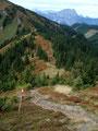 … uns der Steig das letzte Stück zum Teicheneggsattel  bergab führte.