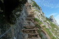 """Jetzt kam der anstrengende Teil dieses Dopplersteiges. In den Fels gehauene Stufen und Holztreppen mit einem """"Drahtseil-Handlauf"""" erleichterten hier den Anstieg über das schmale und etwas luftige Felsband."""