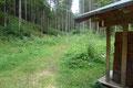 … die Schotterstraße zur Jagdhütte in der Sulzaustube entlang. Gleich dahinter ließ mich der markierte Steig  im Wald verschwinden.