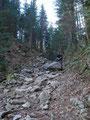 Jetzt wurde der Weg etwas steiniger und ich nutzte sofort den größten Felsen, um mich einmal in Szene zu setzen.