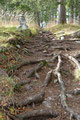 Die in der Bergwelt gut bekannten Steinmännchen waren immer wieder entlang des Weges anzutreffen.