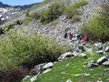 Nach der grünen Wiesenlandschaft kam die Steinwüste. An dieser Stelle bahnte sich der Wandersteig seinen Verlauf durch Unmengen von Geröll.