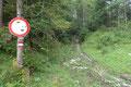 """Bereits wenige Schritte entlang dieser Forstsraße, beim """"Allgemeinen Fahrverbots""""-Taferl verließ ich diese auch wieder und folgte geradeaus einem leicht ansteigenden Hohlweg weiter, …"""