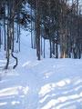 Nachdem wir die Sommeraualm hinter uns gelassen hatten wurde der Schnee endlich mehr. Wir waren jetzt wieder in einer richtigen Winterlandschaft angelangt.