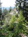 Die letzten Meter zum Gipfel sind sehr ausgesetzt und nur für trittsichere und schwindelfreie Bergwanderer zu empfehlen.