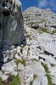 So richtig dem Toten Gebirge gerecht zu werden, durchsetzten Felsen mehr und mehr das Gelände und der Verlauf des Steiges steilte mitunter auch etwas an.