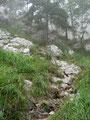 ... zwischen überhängenden Wänden und Felszacken die Brennerriese empor.