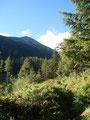 Der Wald lichtete sich etwas und er lies mich einen ersten Blick auf mein heutiges Ziel werfen. Der Griesstein sah von hier ziemlich unspektakulär aus, mal sehen wie es wirklich wird.