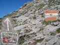 Nun teilte sich der Weg: Rechts führte der Purtschellersteig weiter zur Schafbergalpe, doch unser Weg führte weiter bergwärts zum Schafberggipfel.