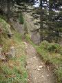 Die Seilpassagen hinter mir gelassen führte ein gut ausgetretener Weg den Hang entlang.