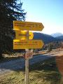 Kurz vor dem besagten Parkplatz 3 zweigte jetzt mein Weg 840 Richtung Pitschenberg ab. 2 ½ Std. war am Wegweiser angegeben.