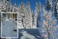Obendrein sorgte das Azurblau des wolkenlosen Himmels für das absolute Wintermärchen. Mit strahlenden Augen und purer Motivation watschelte ich einem Karrenweg, anfangs durch Jungwald, dann durch Hochwald …