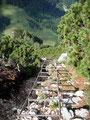 An dieser Stelle angekommen trennten uns nur noch diese ca. 20 Meter lange Eisenleiter und ein paar zusätzliche Höhenmeter vom Gipfelkreuz.