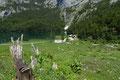 Noch einmal erregte der kristallklare See mit den urigen Jagdhütten meine Aufmerksamkeit, bevor …