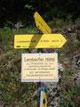 Von hier ging es nochmal ca. 1 km die Forststraße entlang Richtung Bad Goisern, zu unserem Auto. Zu diesem Zeitpunkt wusste ich (Ronald) noch nicht, daß ich morgen nochmals hier bin, um über den Normalweg den Gipfel des Sandling ebenfalls zu besteigen.