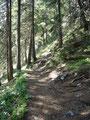 Vorerst jedoch die Devise: Rauf zum Gipfelkreuz des kleinen Bruders des Traunsteins !