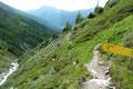 Einige enge Kehren nach oben und der Rundweg mündete etwa zwischen Nigglalm und Peischachtörl wiederum in den Aufstiegsweg ein.