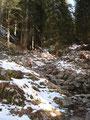 Das Problemstück überwunden, folgten wir weiter unserem Pfad Nr. 217, einmal moderat und dann wieder steiler ansteigend Richtung Aiplhütte.